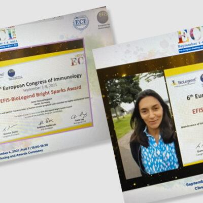 ECI-Bright-Sparks-Award
