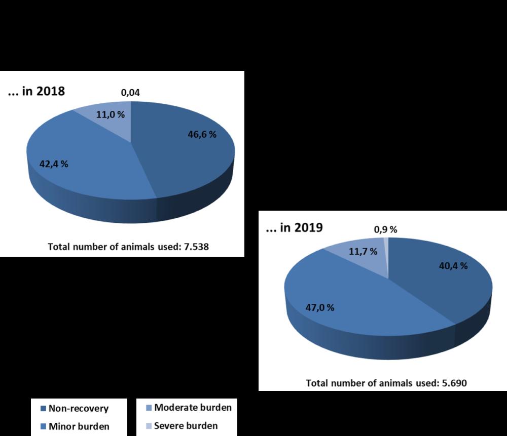 DRFZ animal numbers 2018 and 2019